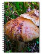 Rusty Mushroom Spiral Notebook
