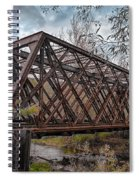 Rusty Sal  7d07856h Spiral Notebook