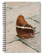 Rusty Tipped Page Butterfly Spiral Notebook