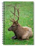 Rut Rest Spiral Notebook