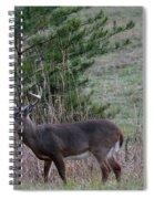 Rutting Buck Spiral Notebook