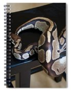 S Is For Snake Spiral Notebook