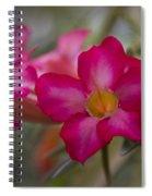 Sabi Star - Desert Rose Garden Of Dreams Hawaii Spiral Notebook