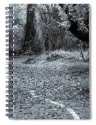 Sacramento River Walk At Turtle Bay Spiral Notebook