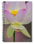 Sacred Lotus Blossom Spiral Notebook