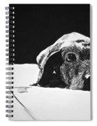 Sad Dog Spiral Notebook