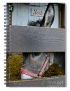 Sad Donkey Spiral Notebook