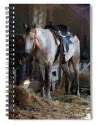 Sad Horse Spiral Notebook
