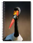 Saddle-billed Stork Portrait Spiral Notebook