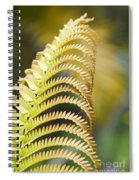 Sadleria Cyatheoides Amau Fern Maui Hawaii Spiral Notebook