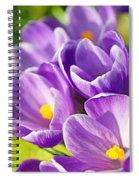 Saffron Flowers. Spiral Notebook