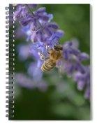 Sage Bee Spiral Notebook