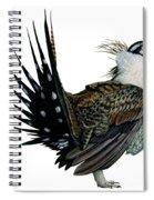 Sage Grouse  Spiral Notebook
