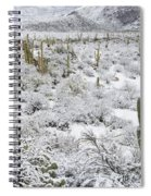 Saguaro Cacti After Rare Desert Spiral Notebook