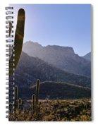 Saguaro Cacti And Catalina Mountains Spiral Notebook
