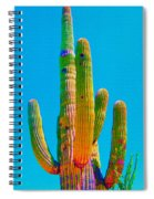 Saguaro Colors Spiral Notebook