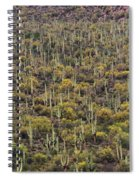 Saguaro Forest At The Foot Of Four Peaks Spiral Notebook