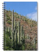 Saguaro Forest In The Superstitions Spiral Notebook