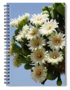 Saguaro In Bloom In The Superstition Mountains Spiral Notebook