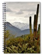 Saguaro Sentinels Spiral Notebook