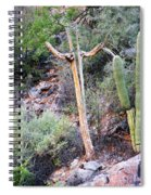 Saguaro Skeleton Spiral Notebook
