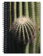 Saguaro With New Arm Spiral Notebook