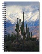 Saguaros And Snow Spiral Notebook