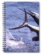Sailfish Chaos Spiral Notebook