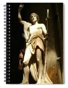 Saint John The Baptist Spiral Notebook