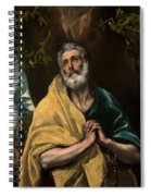 Saint Peter In Tears Spiral Notebook