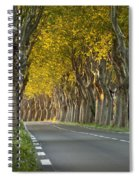 Saint Remy Trees Spiral Notebook