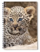 Salayexe's Cub Spiral Notebook