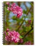 Salmon Berry Flowers Spiral Notebook