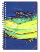 Salmon Of Knowledge Spiral Notebook