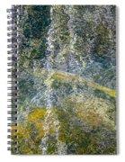 Salmon Art Spiral Notebook