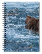Salmon Salmon Everywhere Spiral Notebook
