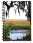 Salt Creek 2 Spiral Notebook