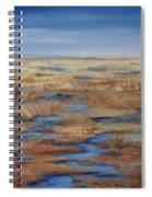 Salt Marsh In Summer Spiral Notebook