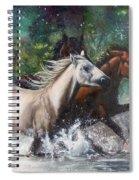 Salt River Horseplay Spiral Notebook