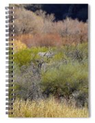 Salt River Spring Spiral Notebook