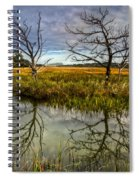 Salty Marsh At Jekyll Island Spiral Notebook