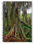 San Gil Spiral Notebook