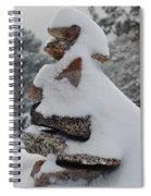 San Jacinto Balanced Rocks Spiral Notebook