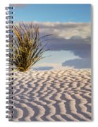 Sand Patterns And The Yucca Spiral Notebook