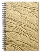 Sand Patterns Spiral Notebook
