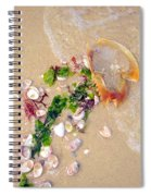 Sand Sea And Shells Spiral Notebook