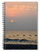 Sand Sea Sun Spiral Notebook
