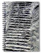 Sand Tracks Spiral Notebook