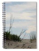 Delaware Sand Dune Spiral Notebook