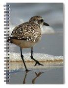 Sanderling Gulf Of Mexico Spiral Notebook